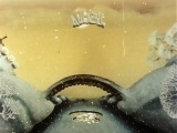Падал прошлогодний снег (1983)  ♥ Добрые советские мультфильмы ♥ http://vk.com/club54443855